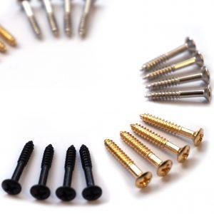 Humbucker Surround Screw by Guitar Anatomy